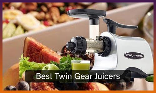 Best Twin Gear Juicers